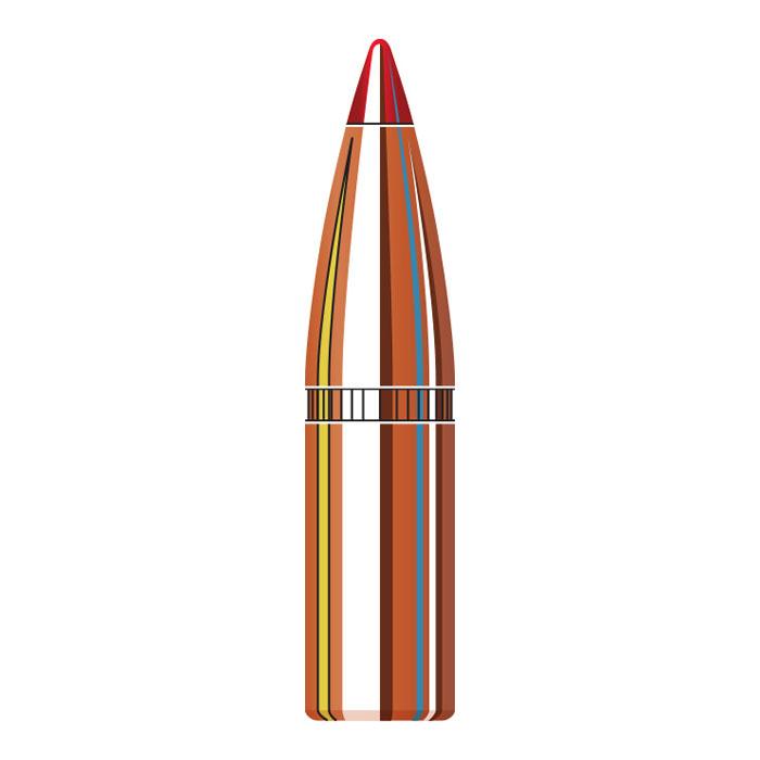Hornady 6mm ( 243